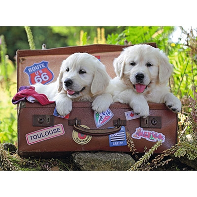 Traveling Pups 105380